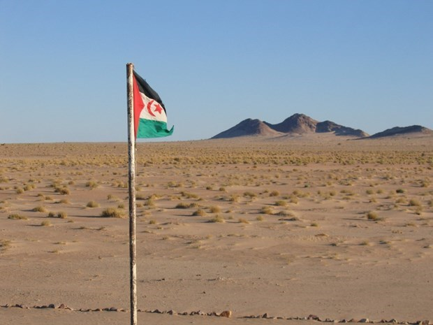 Vietnam calls on parties in Western Sahara to return to negotiations hinh anh 1