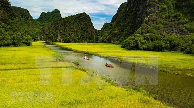 Agritourism brings new sources of income to farmers in Ninh Binh hinh anh 4