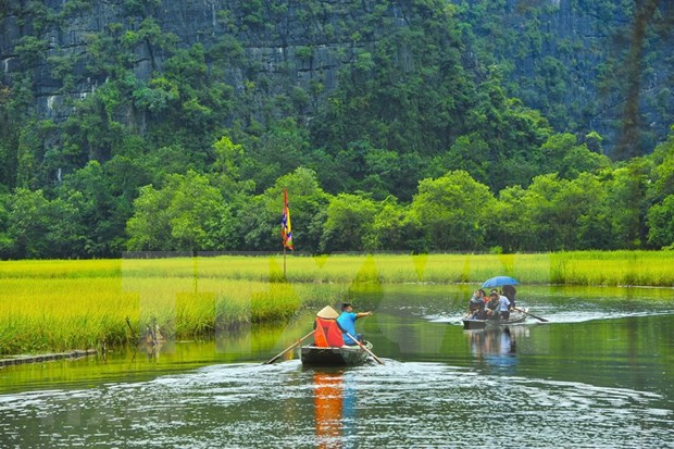 Agritourism brings new sources of income to farmers in Ninh Binh hinh anh 3