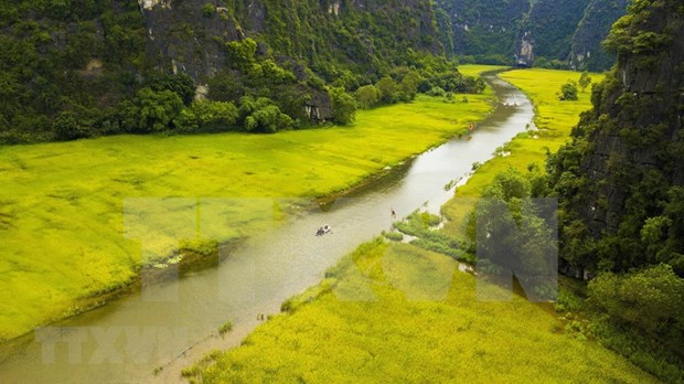 Agritourism brings new sources of income to farmers in Ninh Binh hinh anh 2