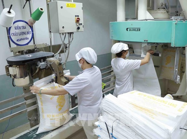 Measures sought to capitalise on European market hinh anh 1