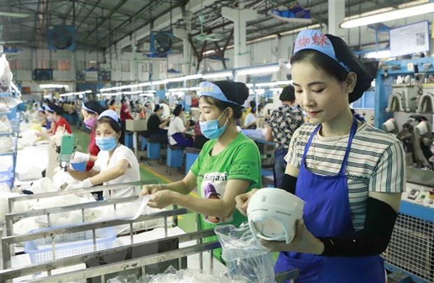 Businesses advised to diversify capital sources in new context hinh anh 1