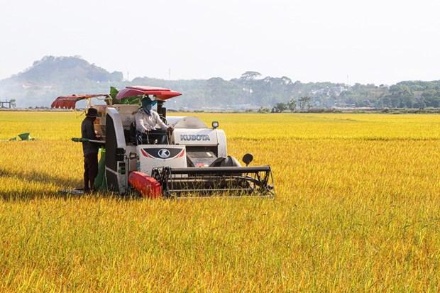 Ba Ria-Vung Tau: Agricultural mechanisation benefits local farmers hinh anh 2
