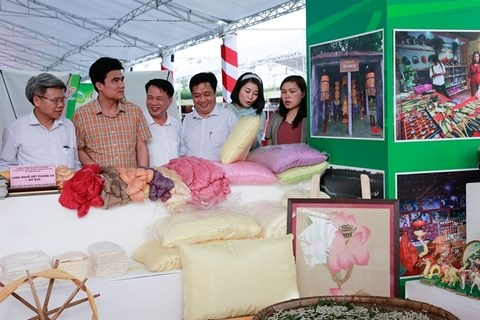 Hanoi boosts sale of rural products hinh anh 1