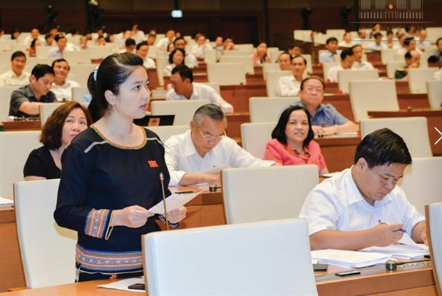Vietnam plans to raise ethnic NA deputies to 18 percent hinh anh 1