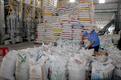 Rice exporters urged to utilise FTAs to boost declining shipments hinh anh 1