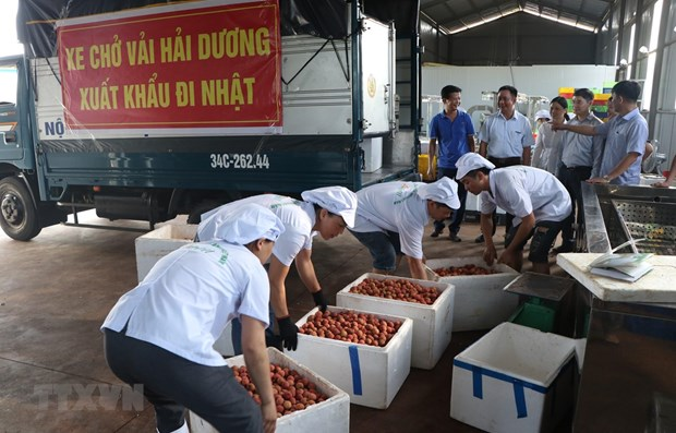 Measures put in place to bolster agricultural product exports hinh anh 1