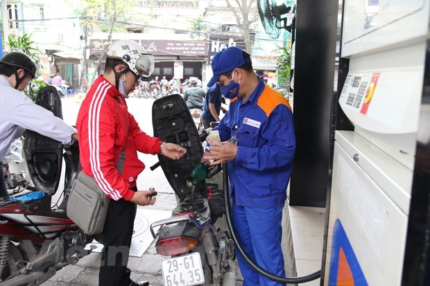 Petrol prices increase in latest review hinh anh 1