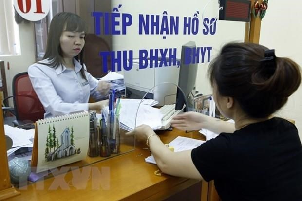 VSS proposes increasing assistance for voluntary social insurance holders hinh anh 1