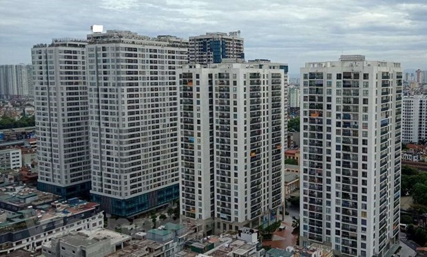 Domestic real estate market continues to see rosy signs hinh anh 1