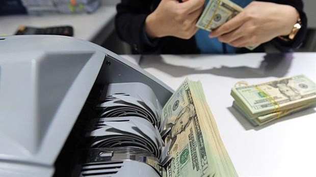 Vietnamese abroad send home over 17 billion USD in remittances in 2020 hinh anh 1
