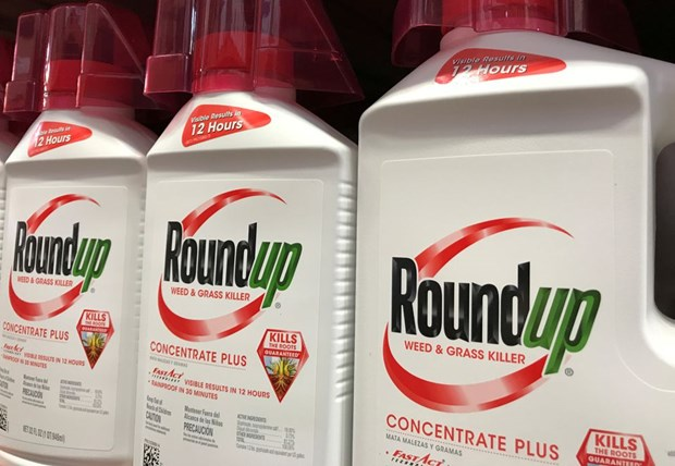 US court denies appeal in Roundup cancer case hinh anh 1