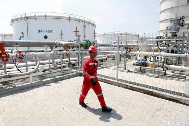 Indonesia looks to end LPG import by 2027 hinh anh 1
