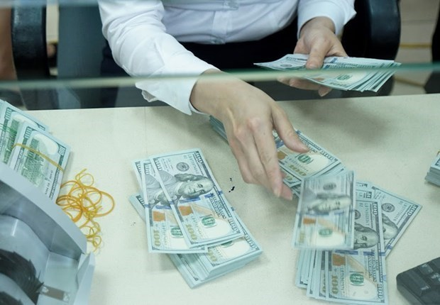 Reference exchange rate down by 16 VND at week's beginning hinh anh 1