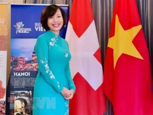 Vietnam discusses potential medical cooperation with Swiss group hinh anh 1