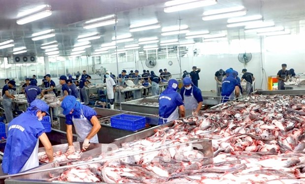 Seafood exports to go up by 10 percent in Q2 hinh anh 1