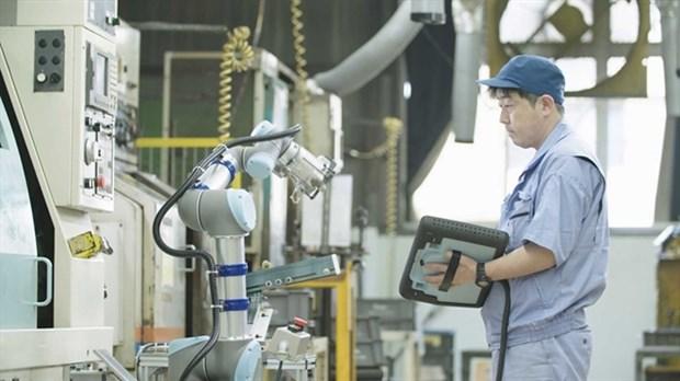 Universal Robots advises Vietnam's manufacturers to deploy cobots hinh anh 1