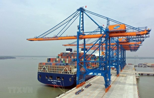 Container cargo growth in double digits this year hinh anh 1