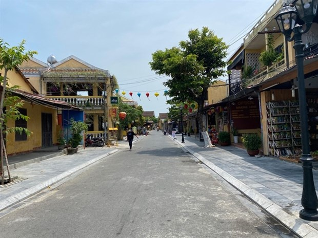 Tourism-related firms face bankruptcy due to pandemic hinh anh 1
