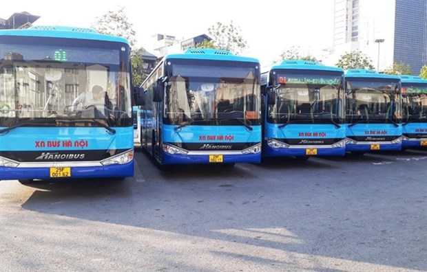 Hanoi to add more bus routes in suburbs hinh anh 1