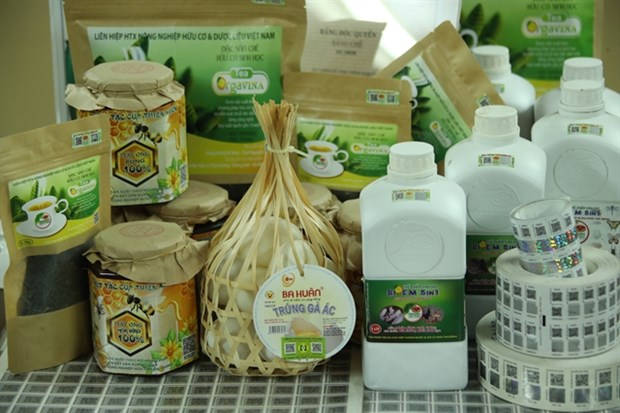 Hanoi steps up promotion for farm produce hinh anh 1