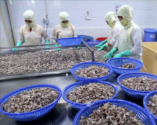 Kien Giang's exports up nearly 16 percent hinh anh 1