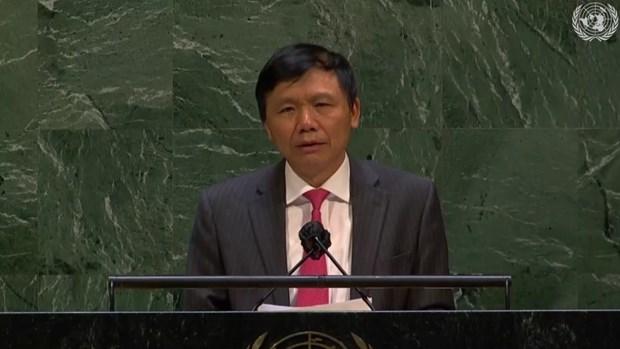 Ambassador: Vietnam welcomes Israel – Hamas ceasefire hinh anh 2