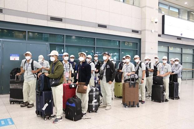 Vietnam resumes sending labourers to RoK hinh anh 1