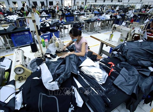 Vietnam removed from list of beneficiaries of EAEU tariff preferences under GSP hinh anh 1