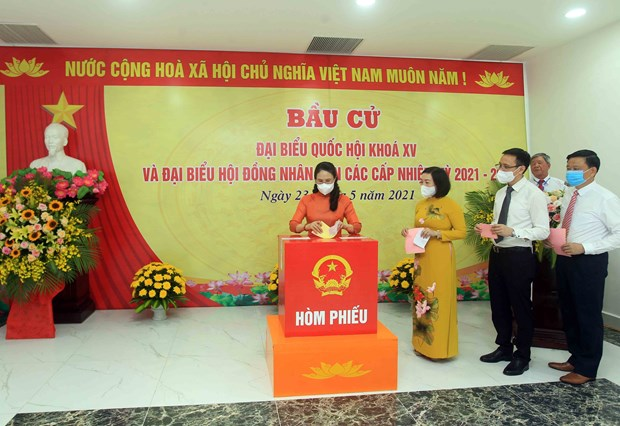 High rates of turnout seen in May 23 elections: NEC hinh anh 1