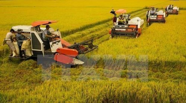 63.4 percent of Vietnamese communes meet new-style rural criteria hinh anh 1