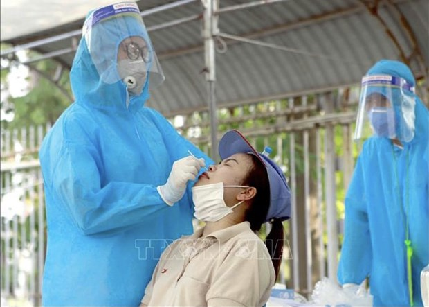 Vietnam confirms 24 domestic COVID-19 infections on early May 27 morning hinh anh 1