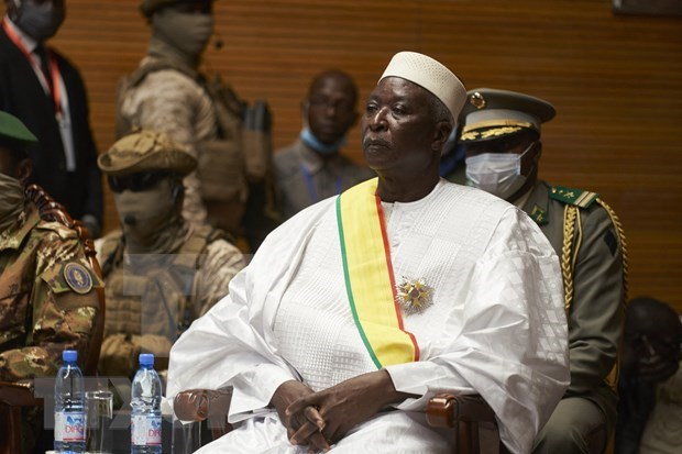Vietnam calls for release of Mali's transitional leaders hinh anh 1