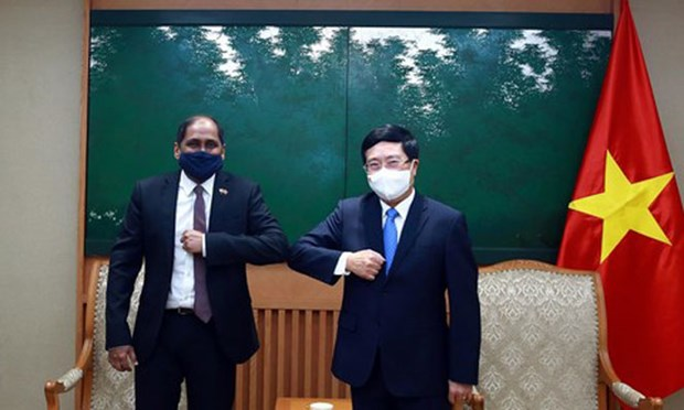 Vietnam suggests Singapore join hands in COVID-19 fight hinh anh 1