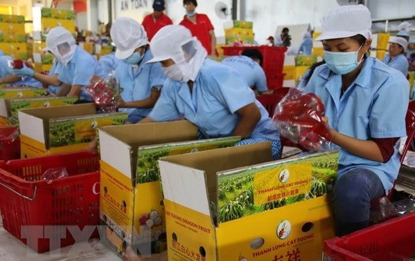 Canadian firms seek trade, investment opportunities in Vietnam hinh anh 1