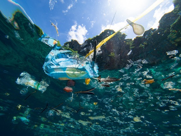 ASEAN launches action plan to combat marine debris hinh anh 1