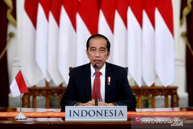 Indonesia to develop world's largest green industrial area hinh anh 1