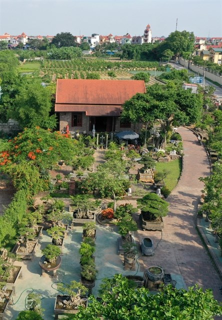 Flowers and ornamental plants are Hanoi's key agriculture products hinh anh 1
