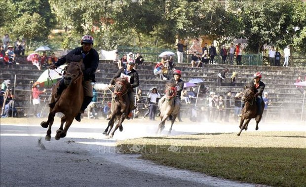 Traditional horse race recognised as national intangible heritage hinh anh 3