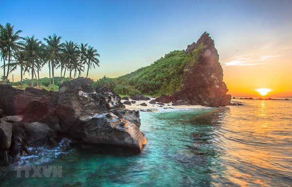 Solutions sought to promote sustainable growth of Ly Son island hinh anh 1