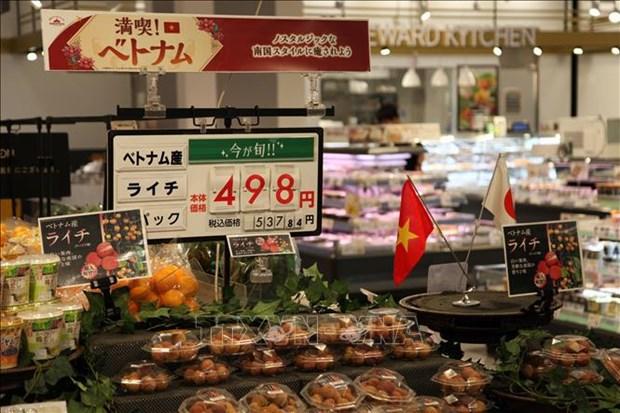 Vietnamese farm produce introduced to Japan hinh anh 1