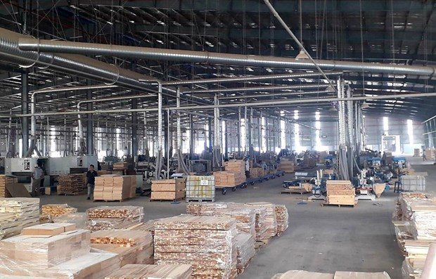 Vietnam striving to enhance transparency in wood sector hinh anh 1