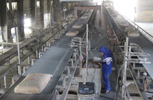 Cement exports soar by 50 percent hinh anh 1
