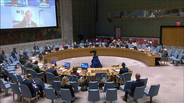 Vietnam proposes diversifying assistance for gender equality initiatives of Sahel hinh anh 1