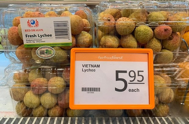 Vietnamese lychees increase presence in Singapore hinh anh 1