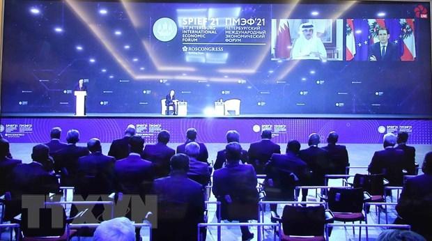 Vietnam attends 24th St. Petersburg International Economic Forum hinh anh 1
