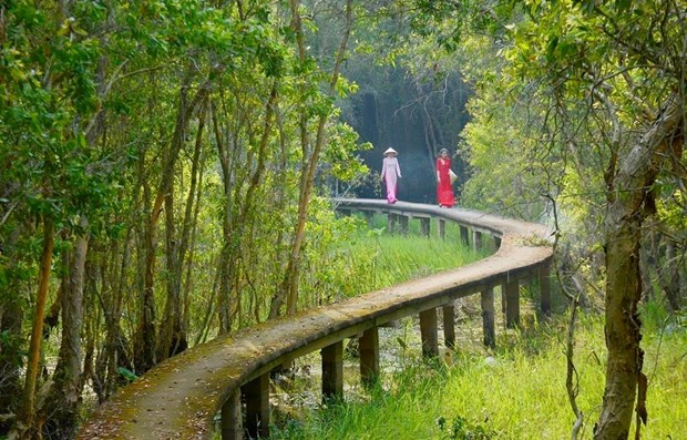 World Environment Day: Vietnam preserving Mekong Delta's ecosystem hinh anh 2