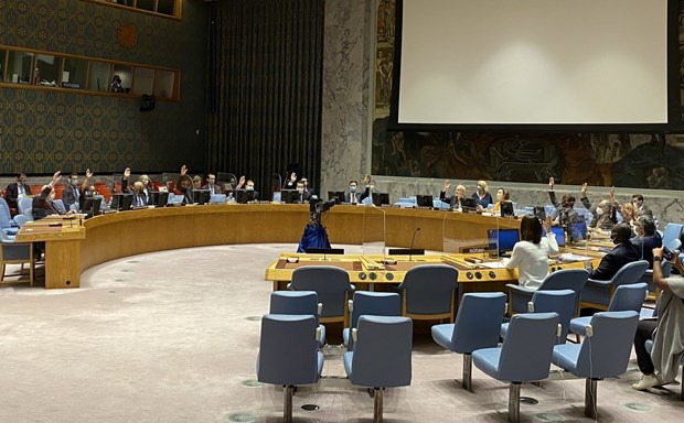 Vietnam backs non-proliferation of mass destruction weapons hinh anh 1