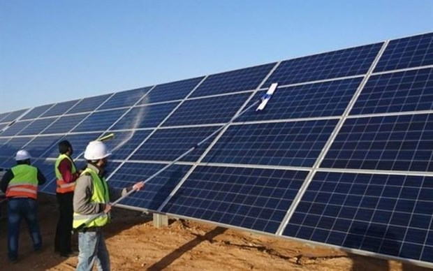 Vietnam may have to reduce renewable power in next five years: institute hinh anh 1