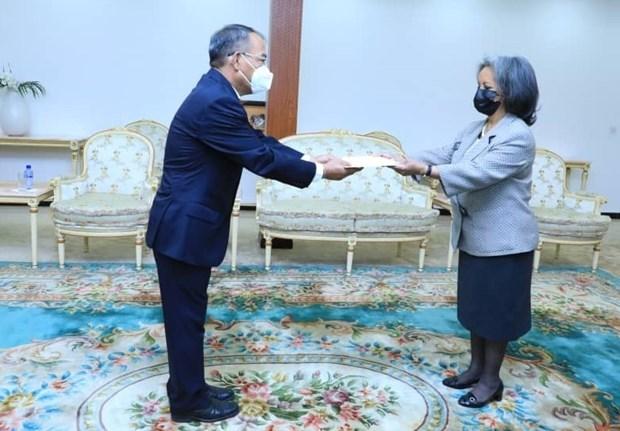 Vietnam, Ethiopia enhance bilateral ties hinh anh 1